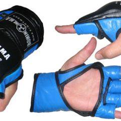 Ronin MMA Glove
